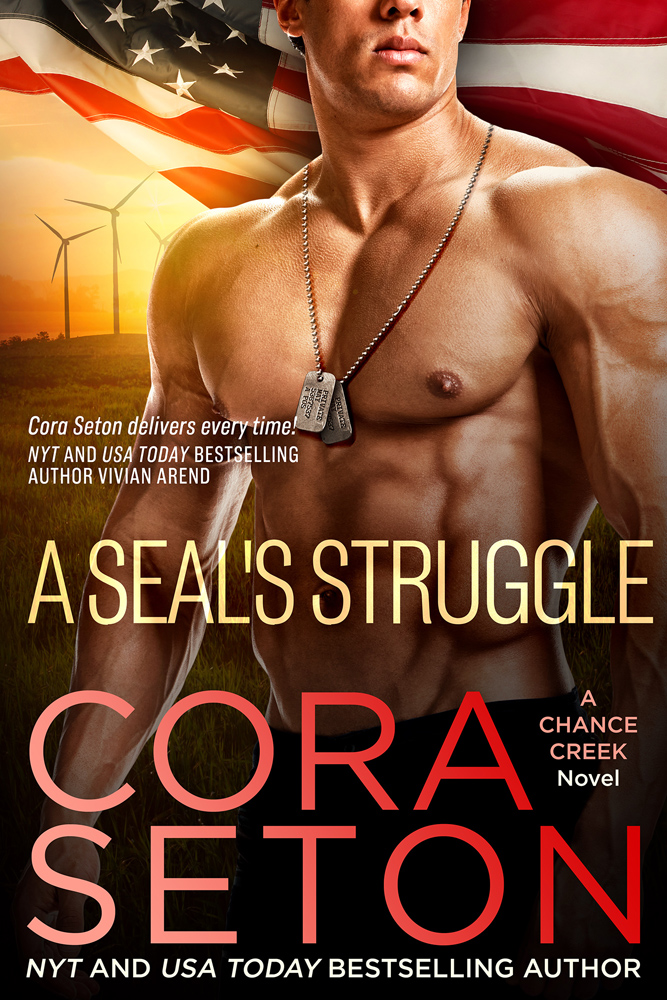 A SEAL's Struggle (Book 9)