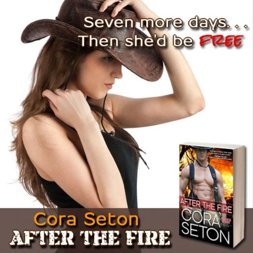 Available Now: After the Fire!