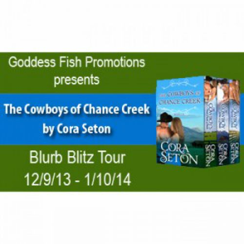 Blog Tour – Two Stops Today!