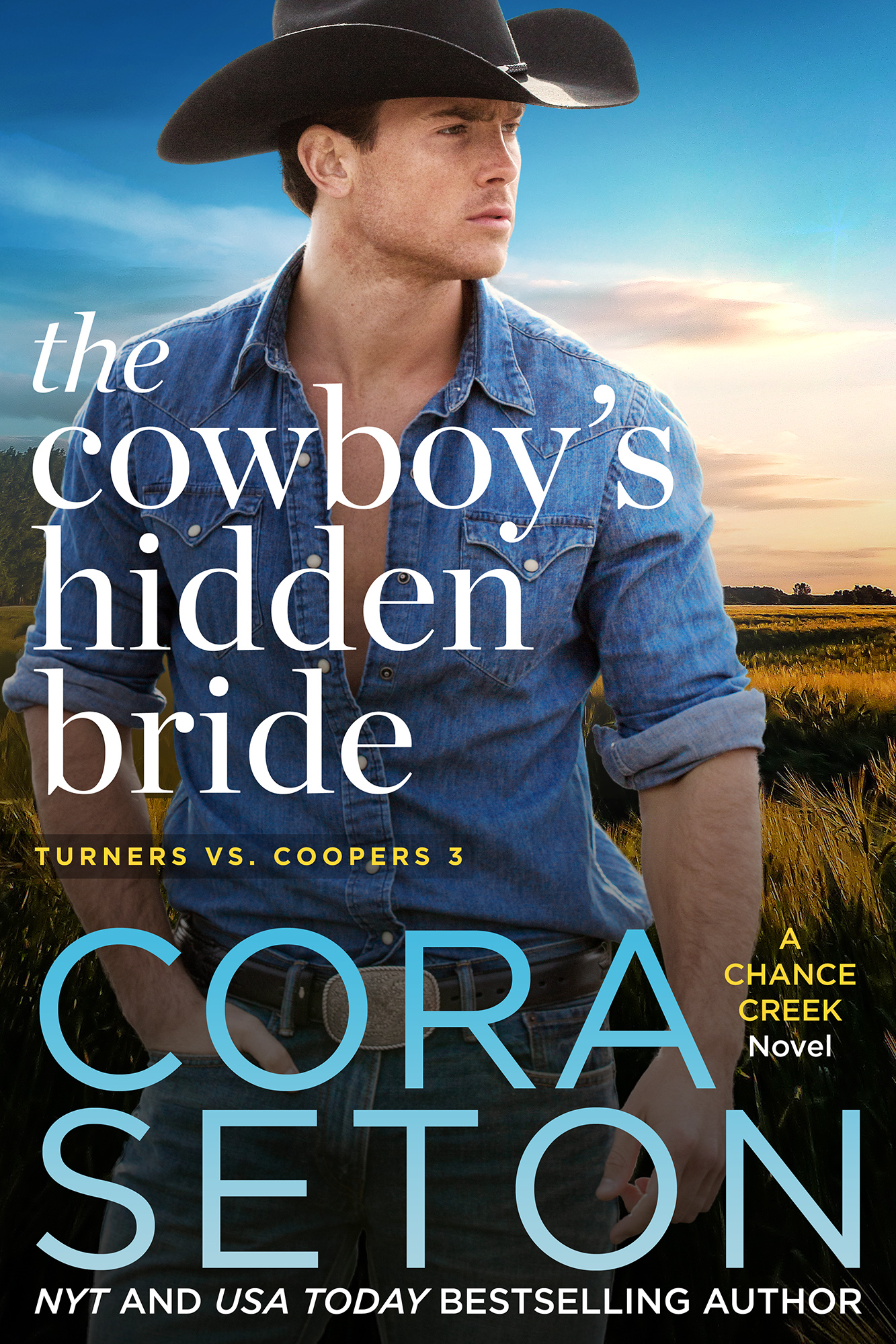 The Cowboy's Hidden Bride
